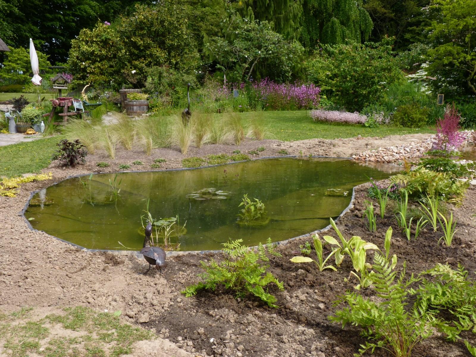 Le bassin aquatique dans votre jardin gr zieu la varenne paysagiste dardilly lyon les - Bassin aquatique contemporain calais ...