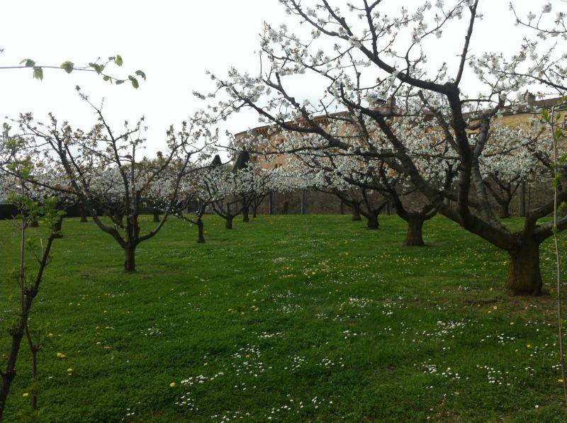 Jardinier paysagiste pour l 39 entretien de vos jardins for Entretien jardin 76