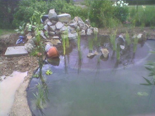 Entretien de mon jardin dieppe 76200 bohin jardin for Entretien jardin 76