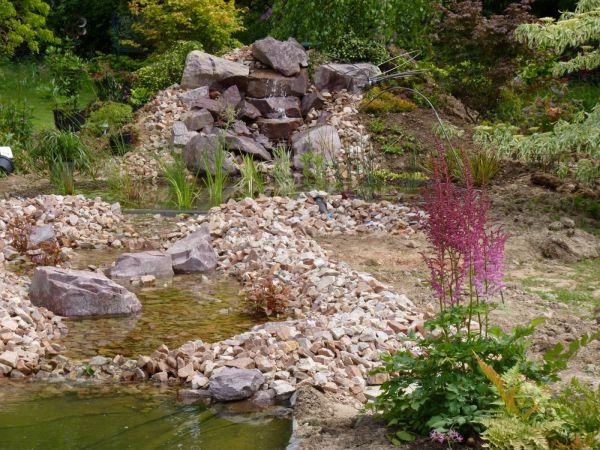 Cr ation d 39 un bassin naturel dans la r gion de dieppe 76200 jardinier paysagiste seine - Bassin naturel jardin rouen ...
